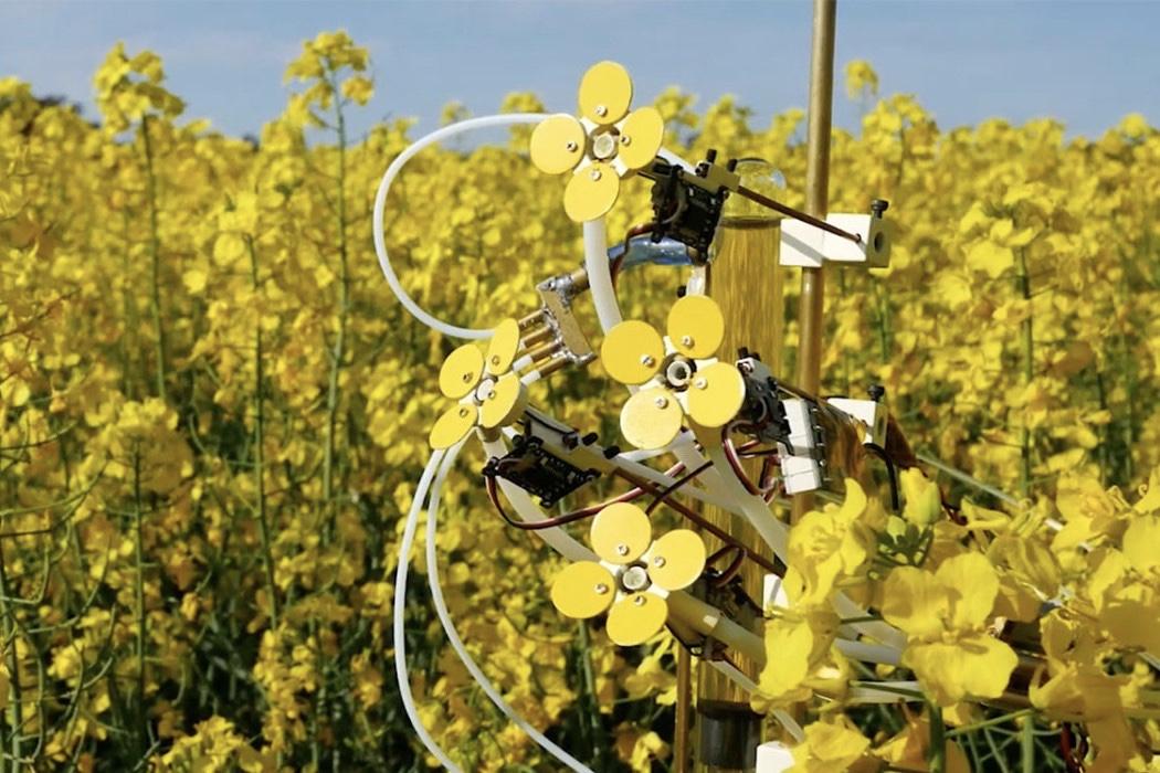 Synthetic Pollenizer, Bees, Artificial Pollinizer, News, Geekerhertz, Technology, Computers, Artificial flowers, Canola, Pollen,Ecology,