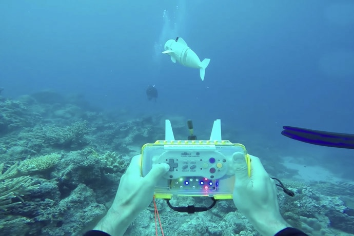 This robotic fish is a realistic spy on marine life 1