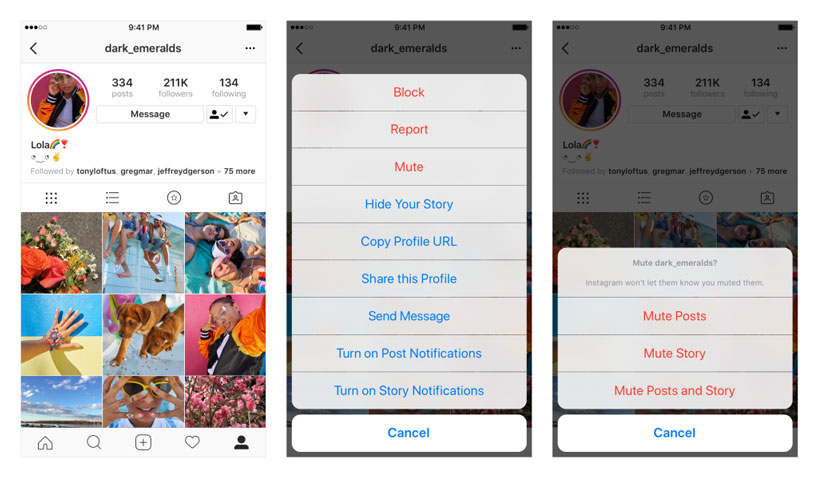 Why Not Mute All Those Irritating Accounts On Instagram? 2