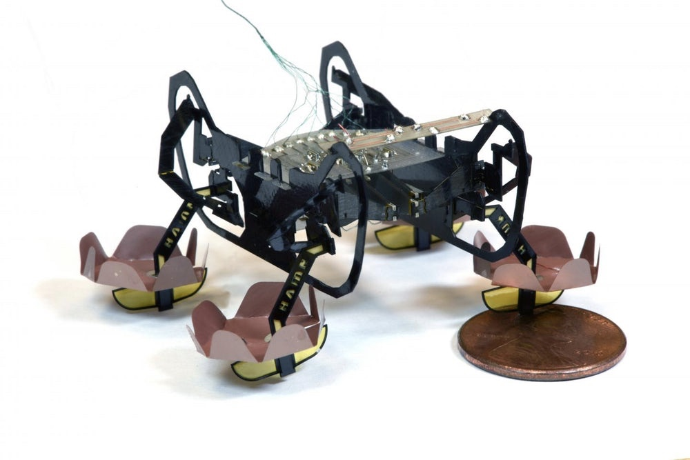 This Micro-robot Can Walk On – Or Under – Water 1