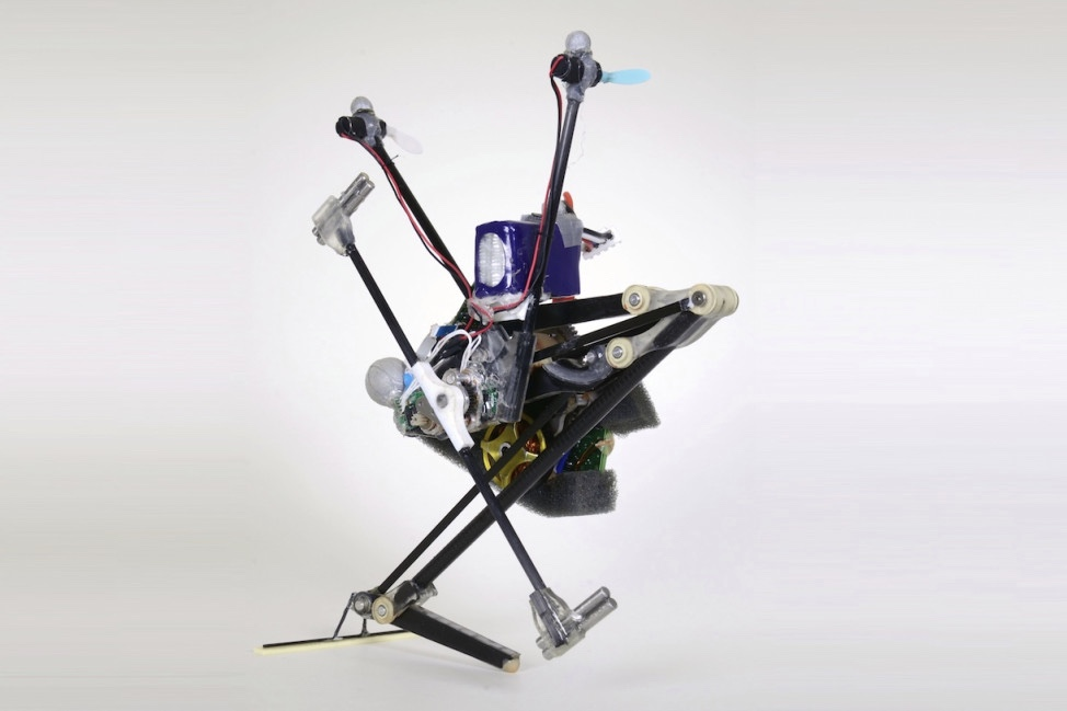 This is one hyper-aggressive pogo-stick robot 1