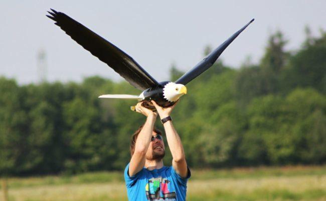 News,Computers/Technology,flight,falcon,bird,Rootics,Robot,Robird,Clear Flight Solutions,