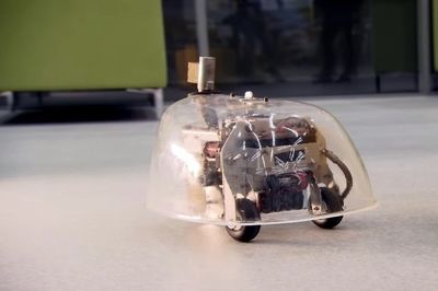 Video: 1940s Robotic Tortoise Navigates Through A Room By Itself!