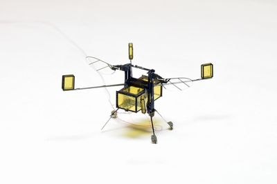 Video: Aquatic Tiny-flying Robot