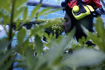 Video: A New Form Of Agriculture – But In The Ocean?