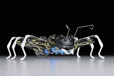 Video: Robot Ants Are Here To Impress, Or Terrify You