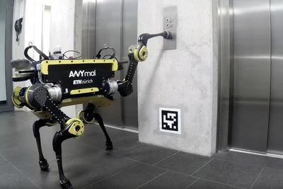 Video: The Anymal Quadruped Robot Can Use An Elevator