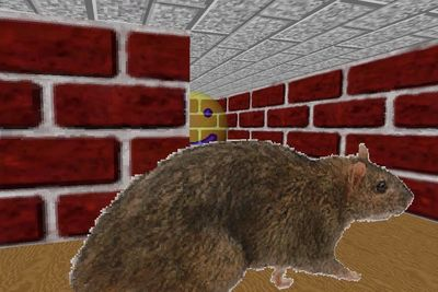 Video: The Windows 95 Tribute Game Traps You In The 3d Maze Screensaver