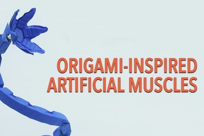 Video: Origami Robot Can Lift 1,000 Times Their Body Weight