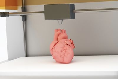 3d Printed Organs Could Help Surgeons Practice For Dangerous Operations.