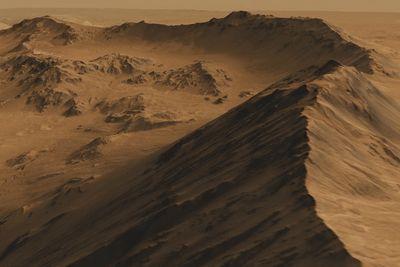 Nasa Might Design Robo-bees To Explore Mars
