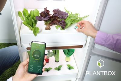Introducing The Plantbox, Created By Samsung