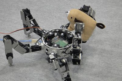 Have You Seen This Prey-grabbing Robot
