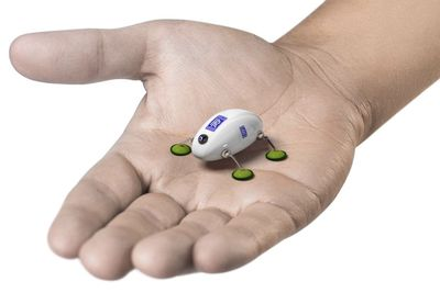 Have You Seen This Tiny Robot Concept?