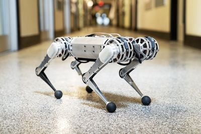 MIT's Latest Mini Cheetah Robot Can Do Backflips