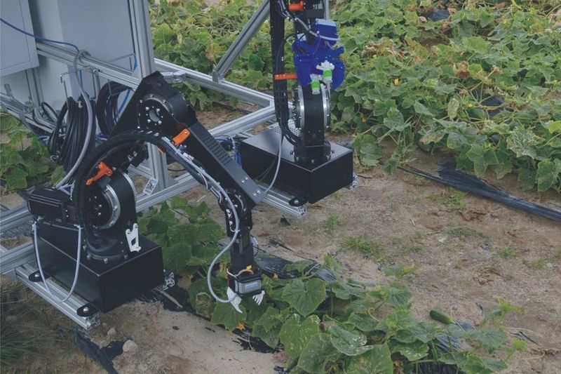 A Helping-robot-hand To Harvest Vegetables 1