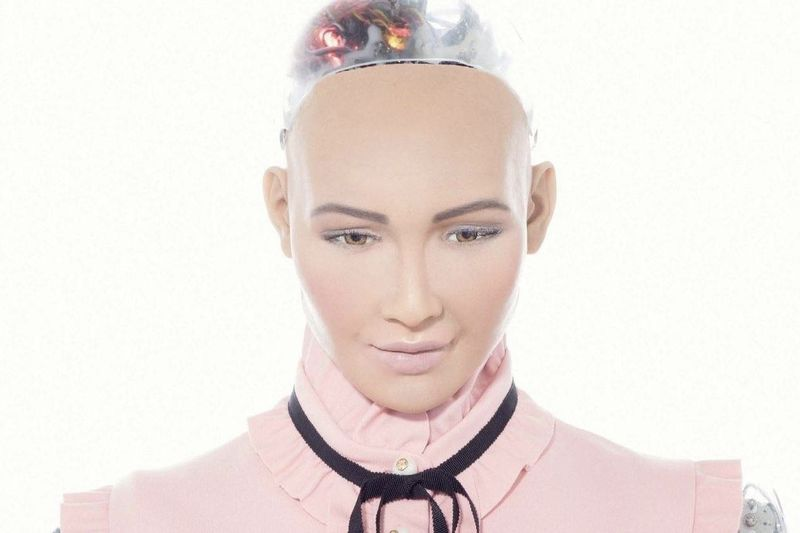 Here Are The Obsessive Followers Of Sophia The Robot 1