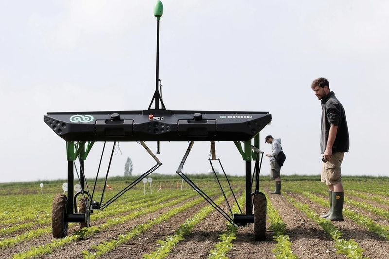 Have You Seen This Autonomous Weed Killer Robot? 1