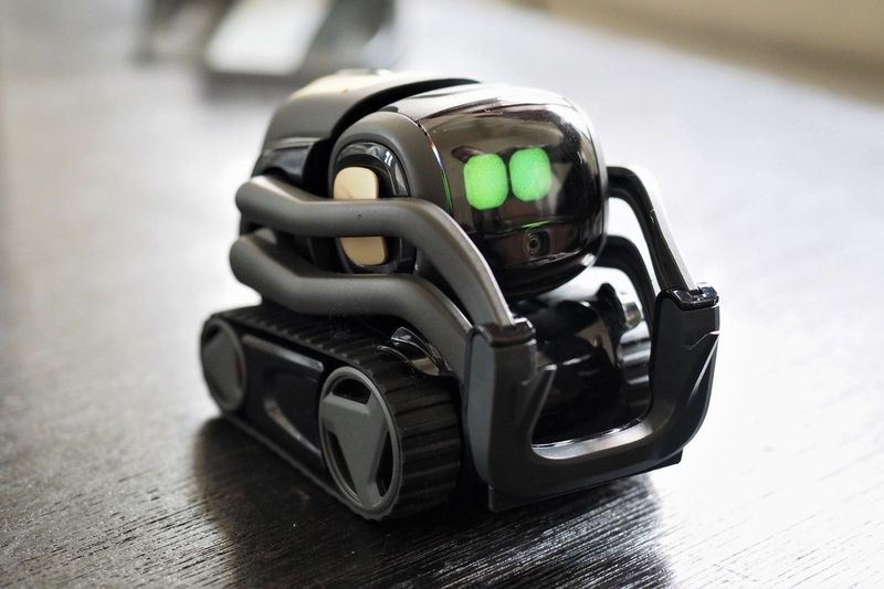 Introducing Vector, The Ai-powered Robot Of The Future 1