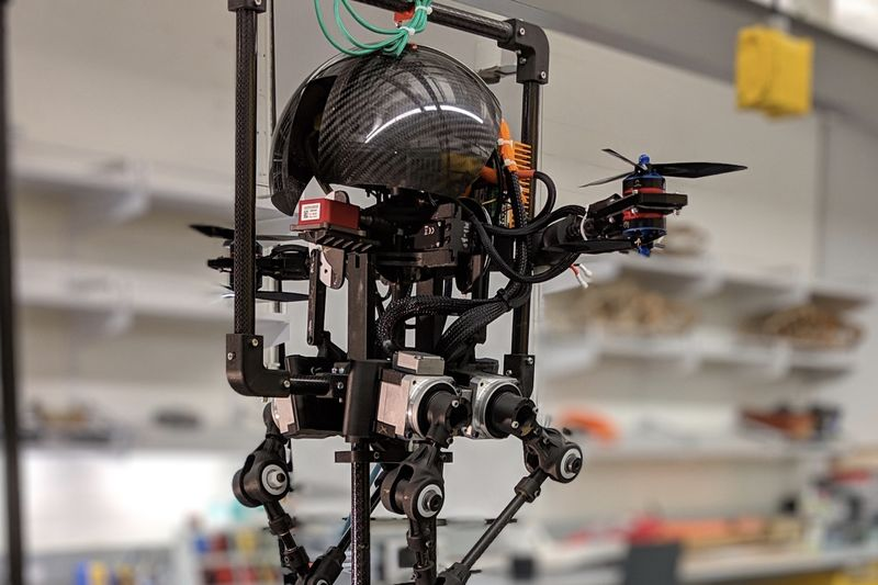 Have You Seen This Humanoid Robot With Wings? 1